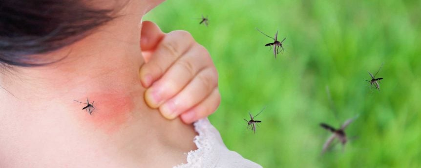 Mosquito Biting Girl