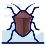 illustration of a stink bug