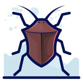 illustration of a beetle